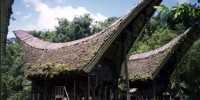 Tongkonan is the traditional house of Toraja people