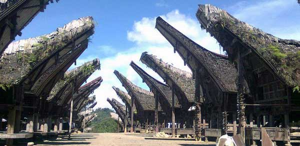 Tongkonan is a name a traditional house Tana Toraja