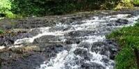 River Tahura Murhum