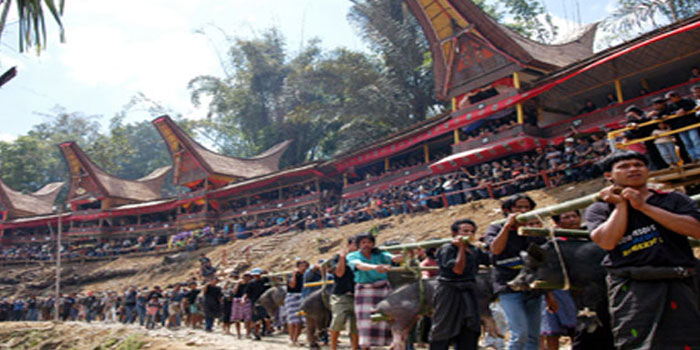 indonesian value and ideology of toraja The ideology and terminology of kinship among the sa'dan toraja 89  indonesia generally  he suggests, kinship must be understood in terms of the values it.
