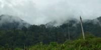 Bogani Nani Wartabone National Park