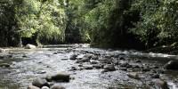 Bogani Nani Wartabone river, Sulawesi